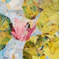 mini water lily 1.jpg