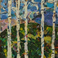 birch trees 8x8.jpg